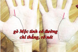 Go Moc Tinh co duong chi thang va ro net