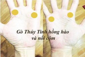 Go thuy tinh hong hao va noi com