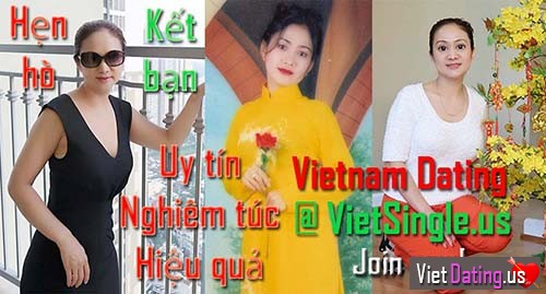 Vietnamese dating logo
