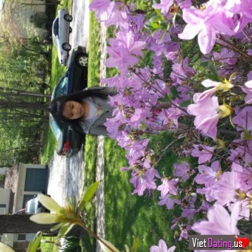 Springflower, United States